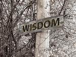 directory, away, wisdom
