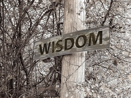 Directory, Away, Wisdom, Education