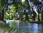 river, channel, trees