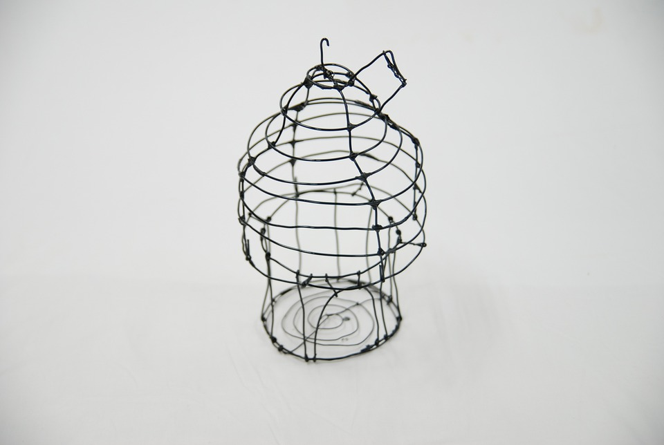 Free photo: Bird Cage, Art, Molding, Box, Wire - Free Image on ...