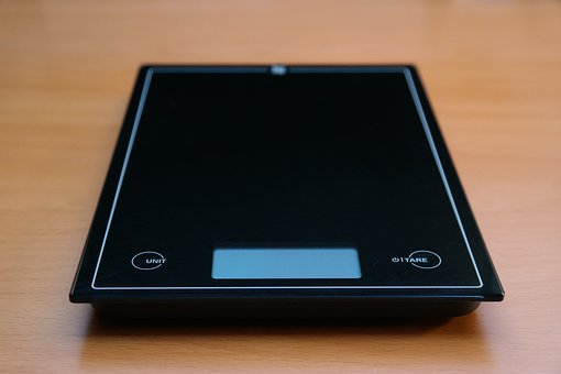 Factors to Consider Before Buying a Cat Weight Scale