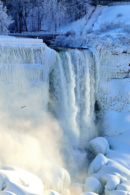 Niagara falls bridal veil : Free photo bridal veil falls niagara winter