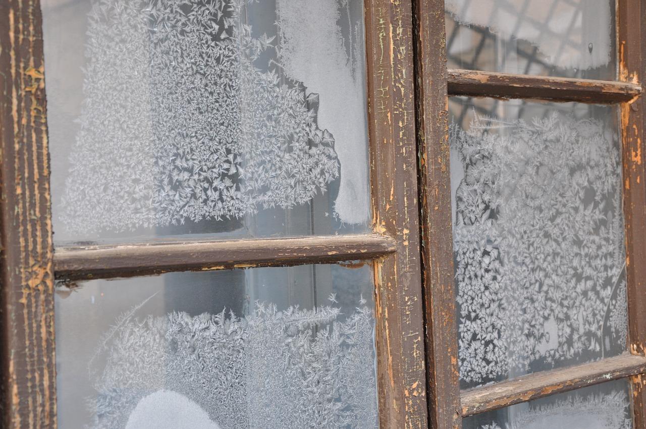 зверушек случаются картинки замороженного окна конечно, заельцовский парк