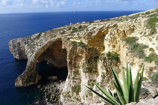 Malte, Gozo, Méditerranée, Rock, Agave