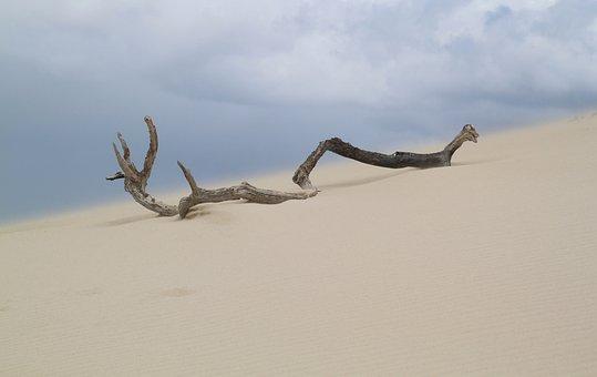 Descubre 5 lugares diferentes desde Punta Cana