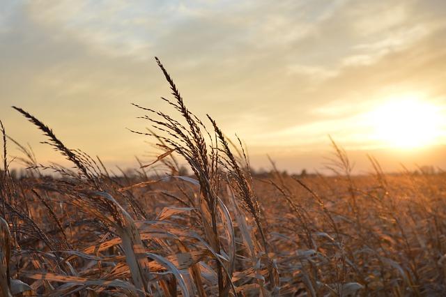 Sunset Midwest Landscape 183 Free Photo On Pixabay