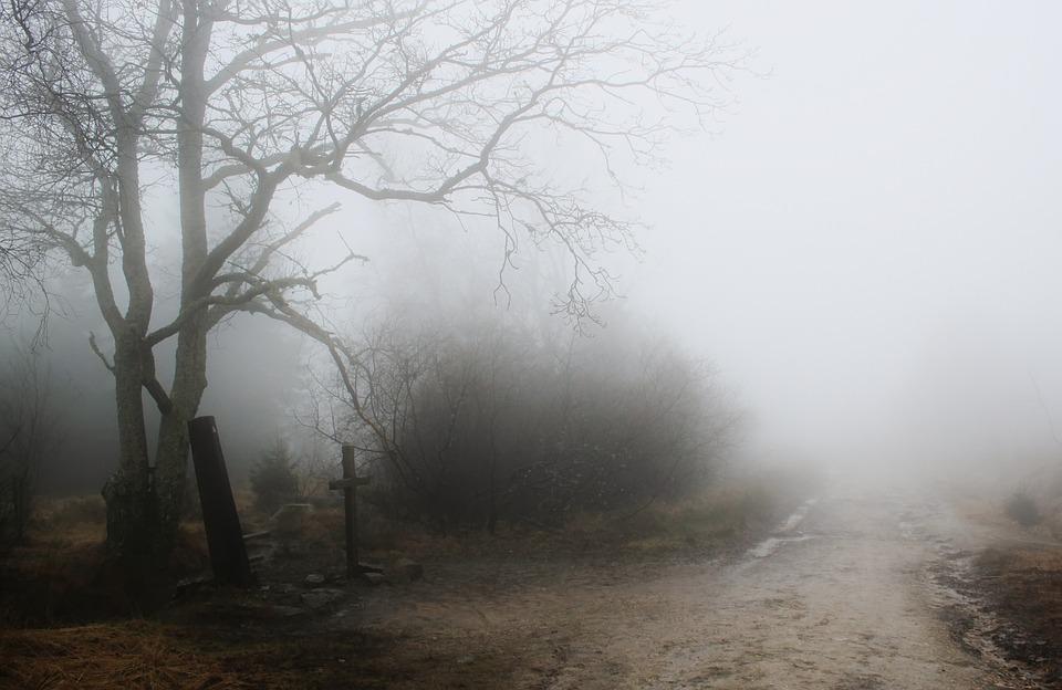 Nebel Hd