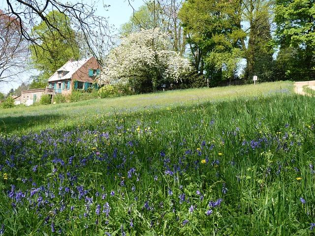 Photo gratuite paysage printemps campagne image for Images du printemps gratuites