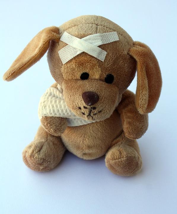 photo gratuite teddy chien animal en peluche image. Black Bedroom Furniture Sets. Home Design Ideas