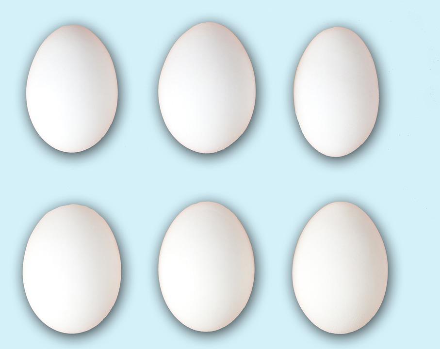 Yumurta Tavuk Yumurtası Pixabayde ücretsiz Resim
