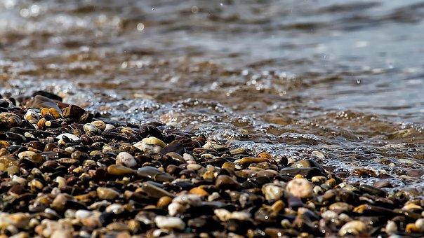 小石, 海岸, 川, 水, 川の銀行, 石, 自然, クローズアップ