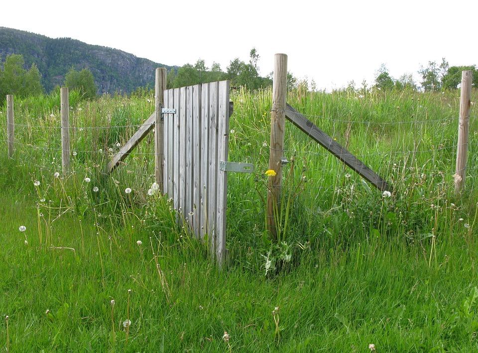 Zaun Holz Pfosten Kostenloses Foto Auf Pixabay