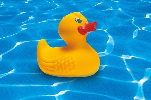 Rubber Duck Squeak Duck Yellow Toys Toy Du