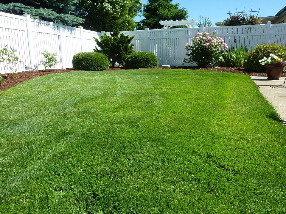 Free photo back yard grass vinyl fence free image on for Care for new sod
