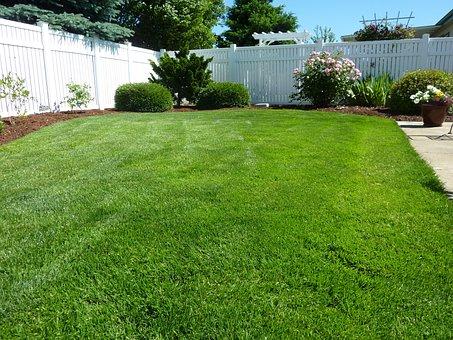 back yard 250890 340