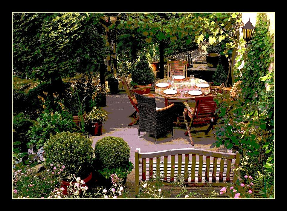 kostenloses foto garten blumen natur blume flora