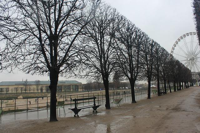 Photo gratuite paris jardin hiver grande roue image for Jardin anglais en hiver
