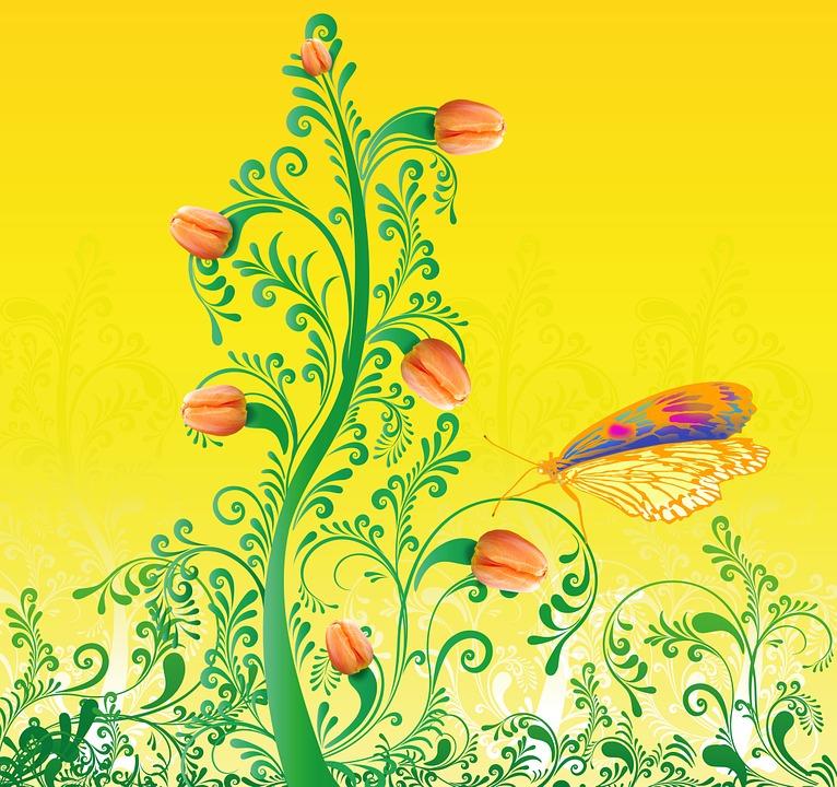 Primăvară Lalele Fluture Imagine Gratuită Pe Pixabay