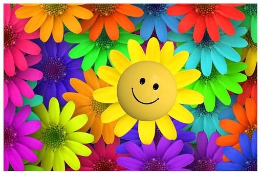 Fleur, Macro, Jardin, Coloré, Fartbig