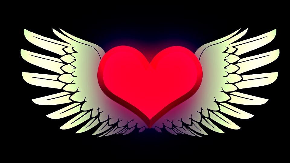 Herz Flügel Liebe... Animated Desktop