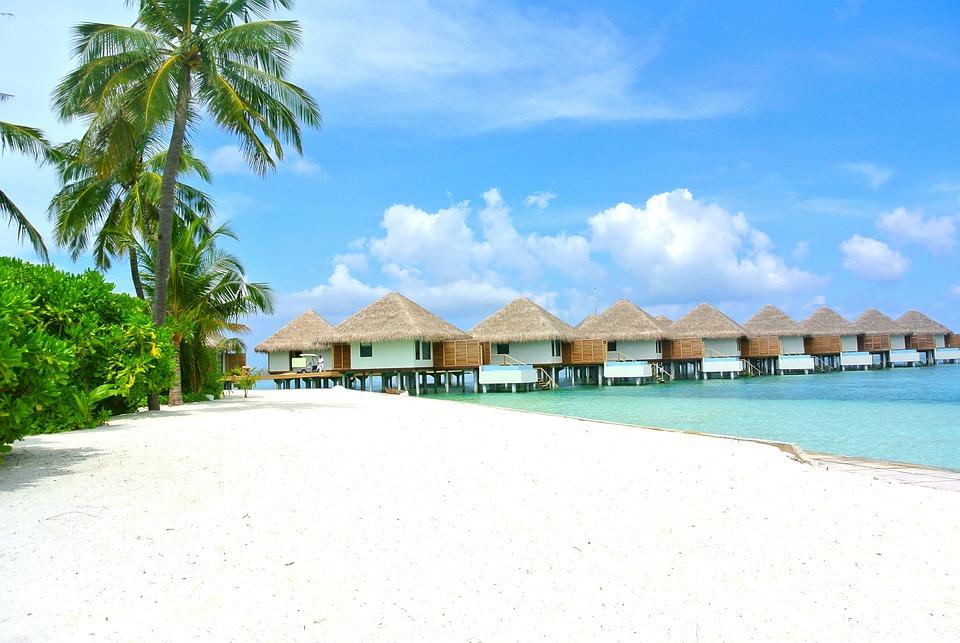 Malediven, Strand, Kokosnuss, White Sand