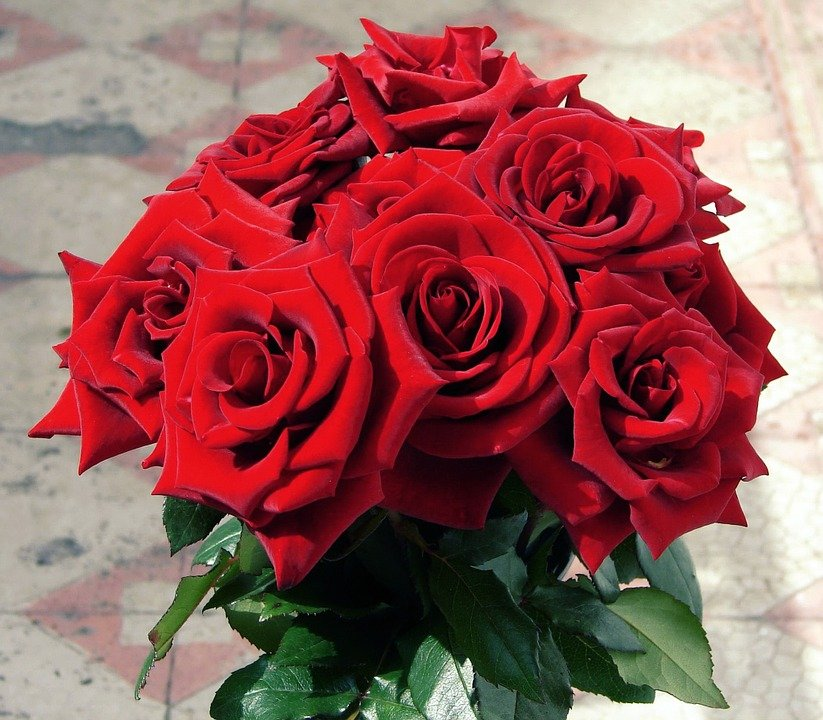 Photo gratuite bouquet de fleurs roses rouges image for Bouquet de fleurs rose