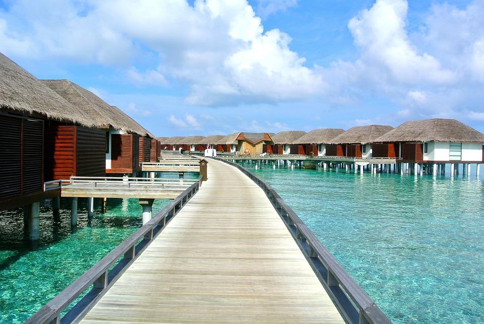 Maldiverna, Beach, Holiday, Kallelse, Klart Vatten
