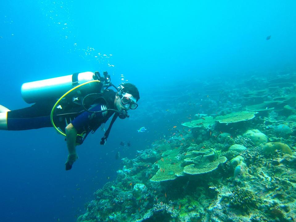 Immersioni Subacquee, Maldive, Mare, Ocean, Scafandro