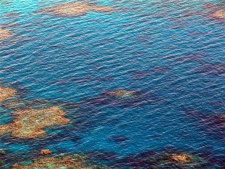 Great Barrier Reef, Diving, Coral, Ocean