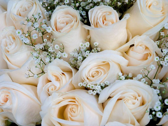 free photo roses bouquet rose bloom flora free