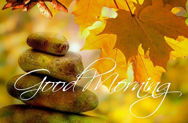 Guten Morgen Herbst Baum Kostenloses Foto Auf Pixabay