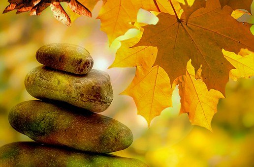 Meditation, Balance, Rest, Autumn, Tree