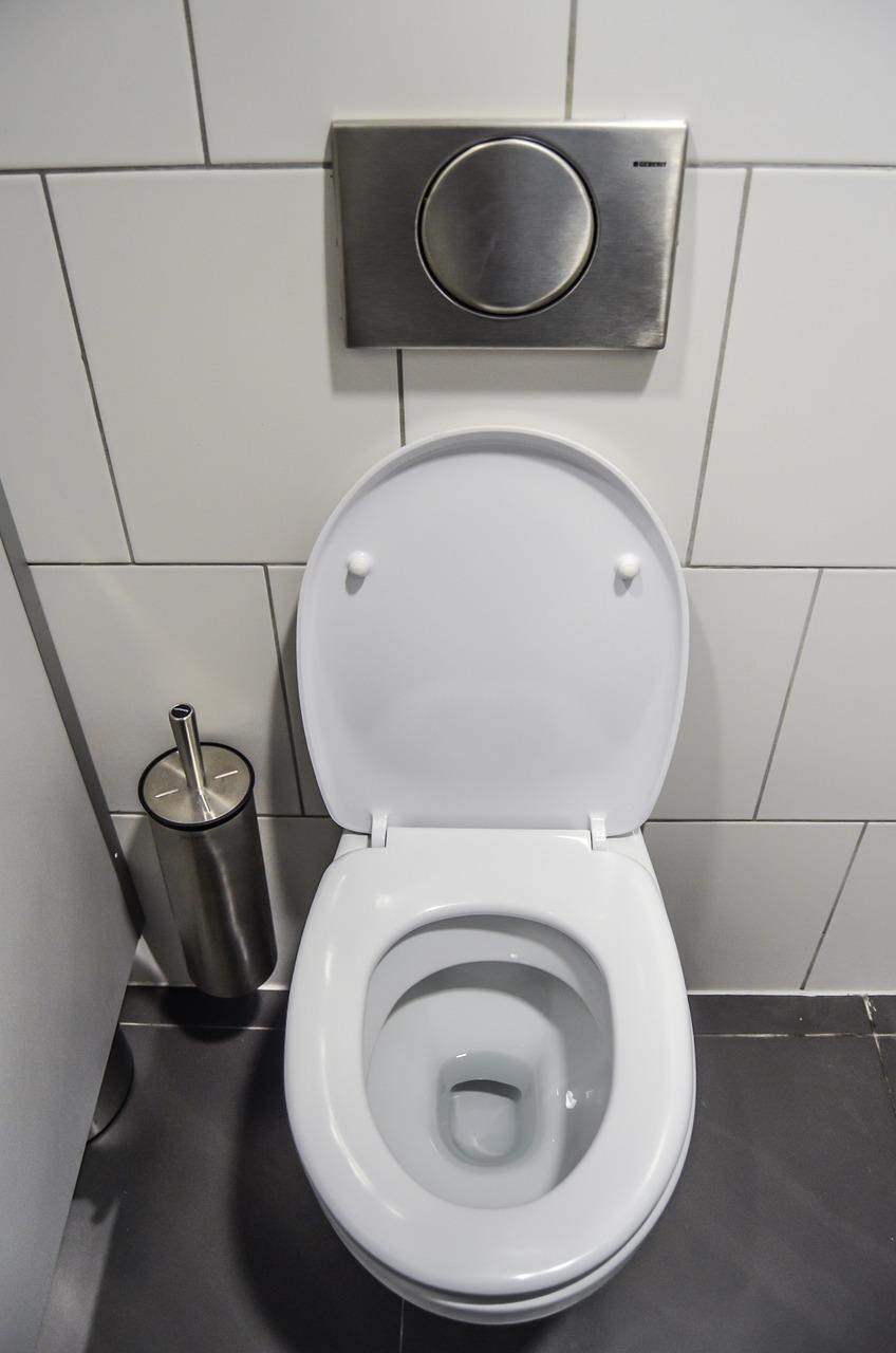 Toilette Gain De Place wc toilet purely public - free photo on pixabay