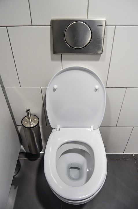 Wc, Toilet, Purely, Public Toilet, Bathroom