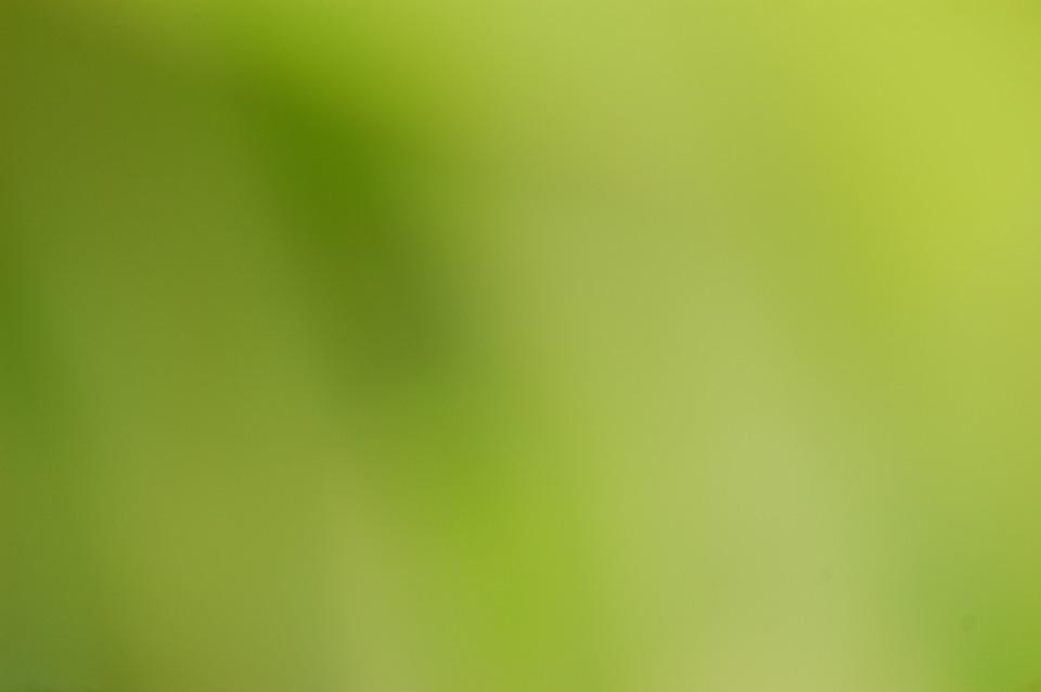 Verde Difuminar De Fondo · Foto Gratis En Pixabay