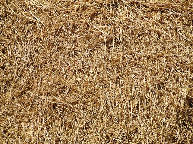 Free Photo Hay Straw Bale Farm Texture Free Image