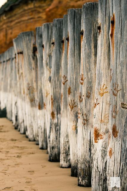 breakwater poles beach 183 free photo on pixabay