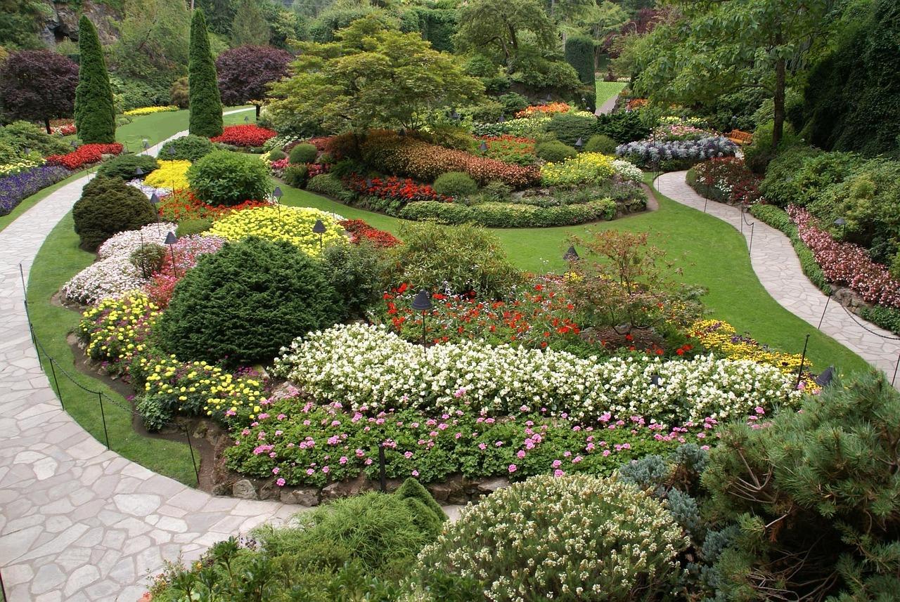 Najpiękniejsze Ogród Botaniczny - Darmowe zdjęcie na Pixabay