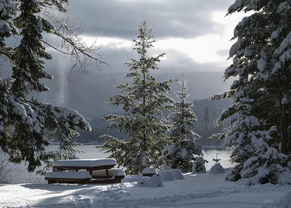 冬, 季節, 寒い, 雪, 氷, 風景, 景色, 霧, 朝早く, 日の出, カニムレイク