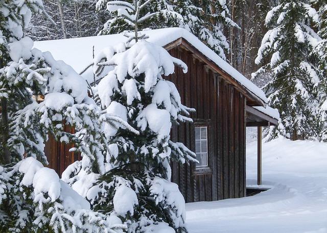 cabane en bois cabine hiver photo gratuite sur pixabay. Black Bedroom Furniture Sets. Home Design Ideas
