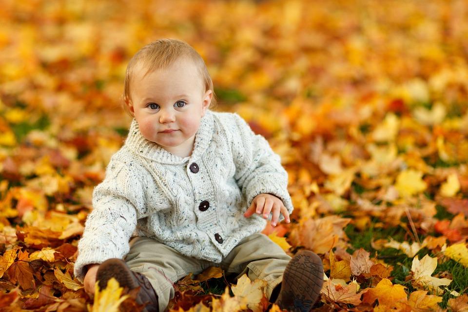 Otoño, Baby Boy, Niño, Lindo, Al Aire Libre, Parque