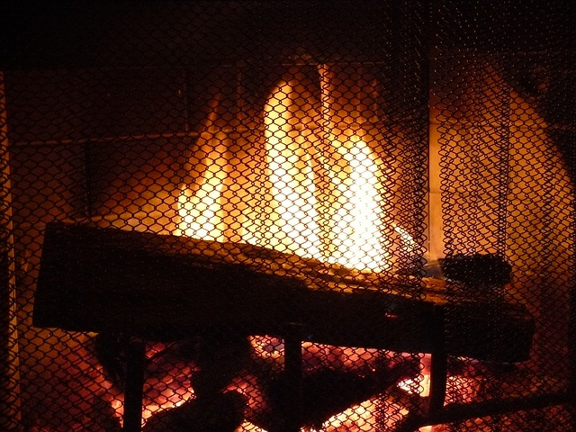 Free photo: Fireplace, Fire, Screen, Warm, Heat - Free ...
