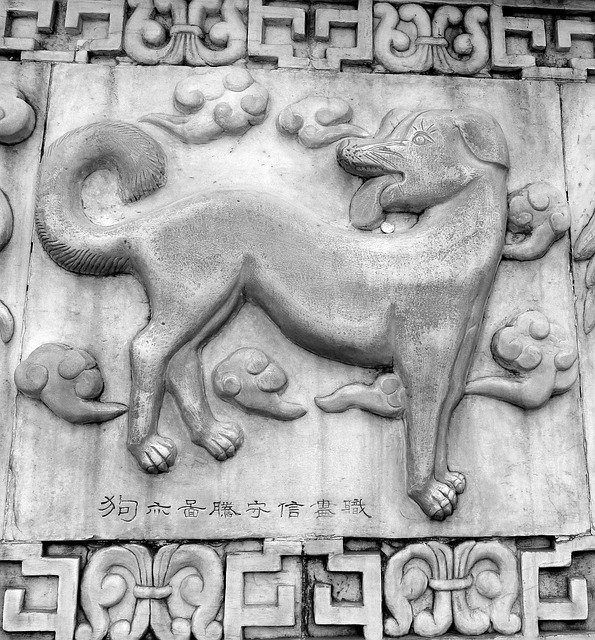 Dog Chinese Horoscope u003cbu003eSymbolsu003c/bu003e - Free photo on Pixabay