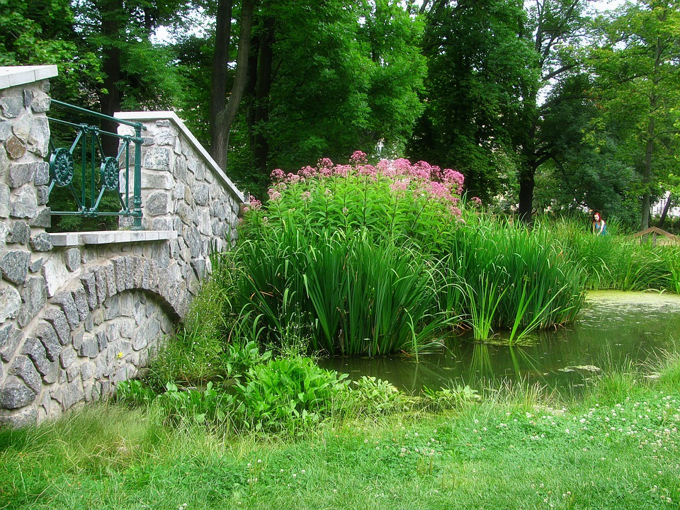 Feng Shui Tuin : Park tuin vijver feng · gratis foto op pixabay