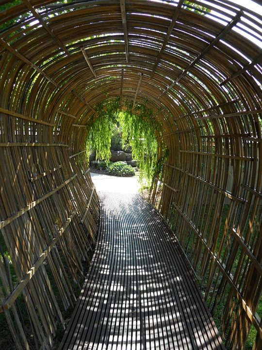 free photo  bamboo tunnel  walkway  arch