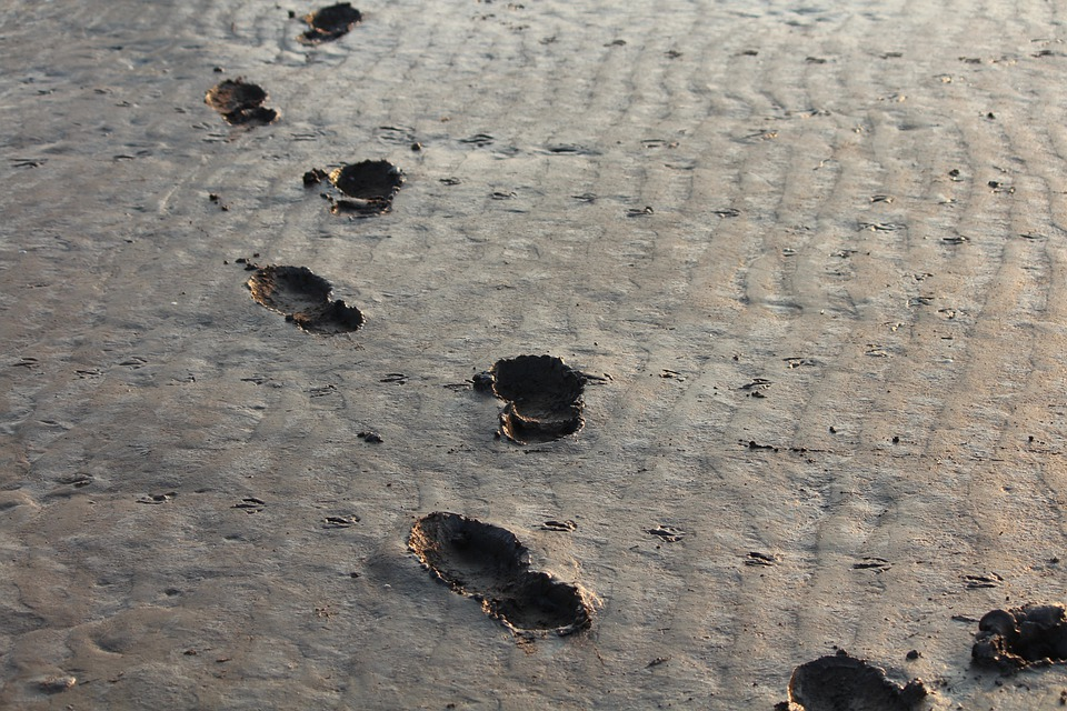 Footprints, Steps, Bristol, Coast, Ebb, Mud, Traces
