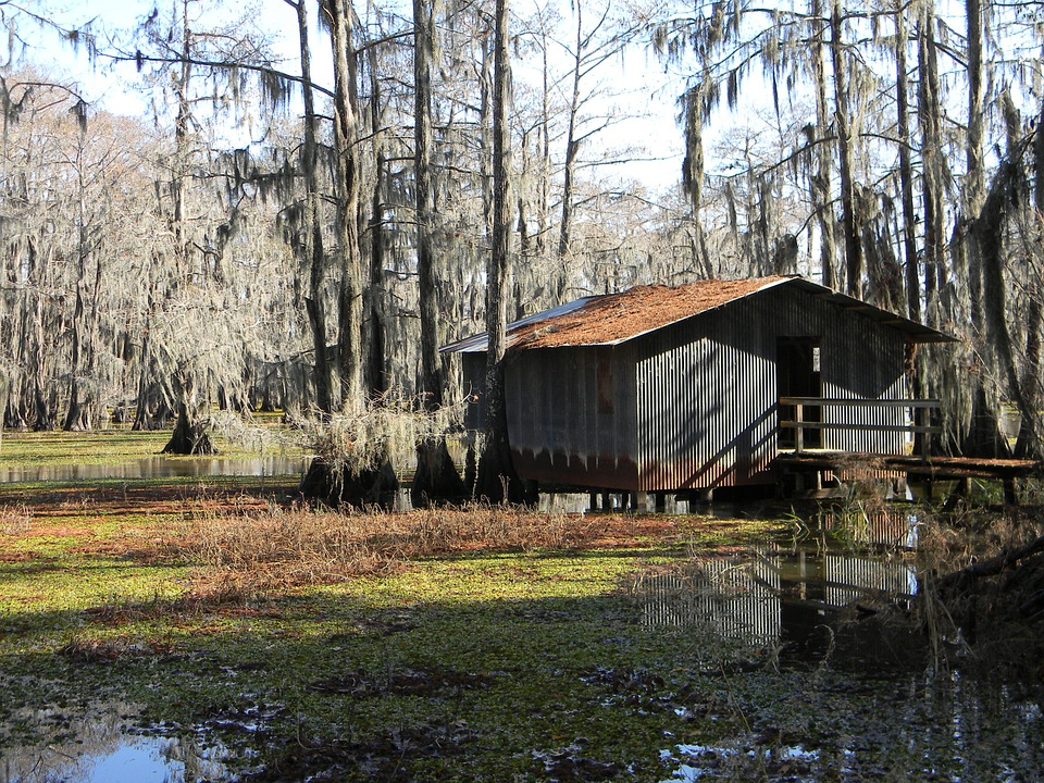 Bayou Swamp Boathouse 183 Free Photo On Pixabay