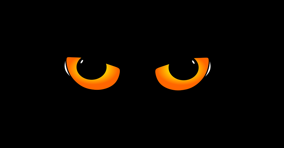 free vector graphic eyes  eye  cat s eyes  cat  kitten free image on pixabay 285825 leopard print border clip art animal print clip art