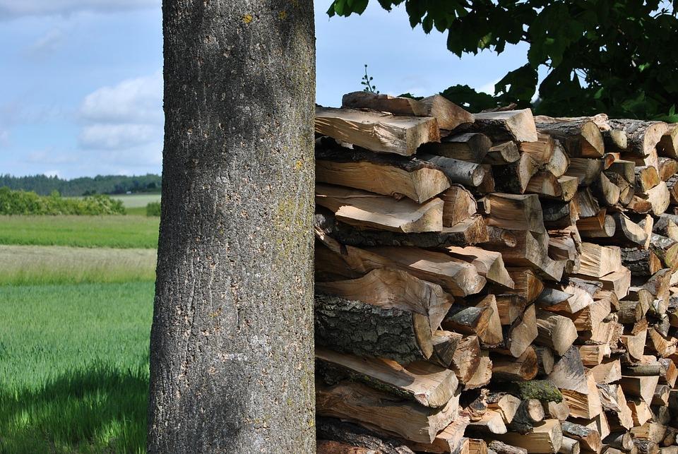Free photo pile of wood storage stack