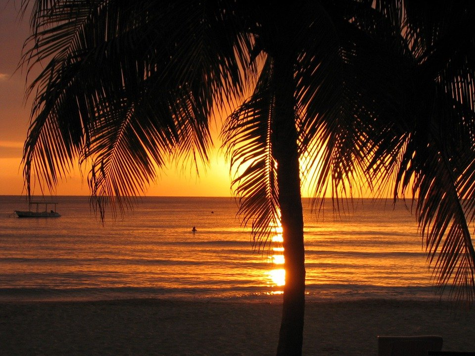 Sunset, Beach, Jamaica, Negril, Palm Tree, Tropical